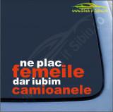 Ne Plac Femeile, Dar ...-Stickere Auto-Cod:ESV-159 -Dim   15 cm. x 6.8 cm.