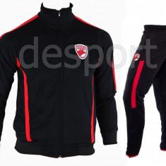 Trening Dinamo - Bluza si pantaloni conici - Modele noi - Pret Special -1183, S, Din imagine
