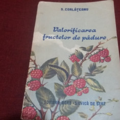 S CORLATEANU - VALORIFICAREA FRUCTELOR DE PADURE 1955
