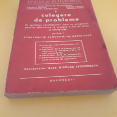 CULEGERE DE PROBLEME PARTEA I STRATEGII SI ALGORITMI DE REZOLVARE N.TEODORESCU