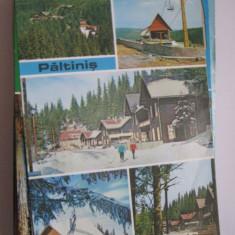 Carte postala anii 80 - Paltinis (colaj)