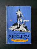 DAN GRIGORESCU - SHELLEY