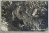 AD 409 C. P. VECHE- BAKONYBEL-CIRC1930-CATRE ILDIKO COURBET , RESITA, JUD.CARAS, Franta, Circulata, Printata