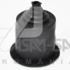 Protectie reglaj far Dacia Logan 6001546792 Asam