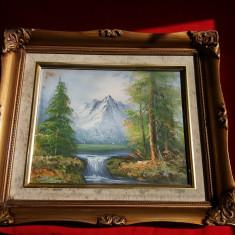 Tablou ulei pe panza - Cascada, Peisaje, Realism