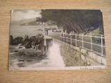 CAB9 - CARTE POSTALA FOARTE VECHE - GERMANIA - CIRCULATA LA 1905
