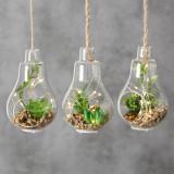 Decoratiune suspendabila din sticla, cu plante si LED Earth Verde, Modele Asortate, H12 cm