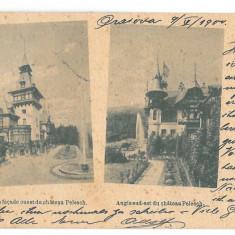 4506 - SINAIA, PELES Castle, Romania, Litho - old postcard - used - 1900