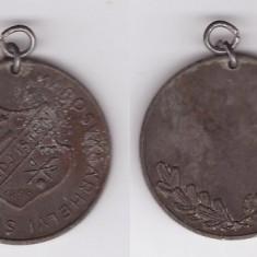 Medalie club sportiv Adj'Isten 1898 (MSE) Targu Mures