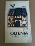 Ghid prin Oltenia subcarpatica - Itinerare turistice- I. Ionescu Dunareanu