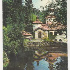 bnk cp Sinaia - Foisorul - necirculata