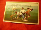 Bloc Nicaragua 1984 - Olimpiada de Vara - Baseball , stampilat