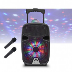Boxa portabila Li-Ion microfon wi-fi disco ball 12'' Bluetooth/USB