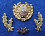 Insigna Militara Ofiter TELECOMUNICATII - Coifura insemn cascheta SEMN DE ARMA