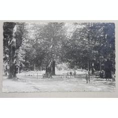 SLANIC - MOLDOVA , PARCUL TREI FAGI , FOTOGRAFIE TIP CARTE POSTALA , MONOCROMA , CIRCULATA , 1932
