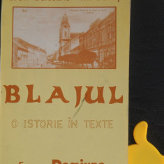 Blajul o istorie in texte Teodor Seiceanu Ion Buzasi