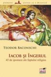 Cumpara ieftin Iacob si Ingerul. 45 de ipostaze ale faptului religios/Teodor Baconschi