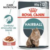 Royal Canin HAIRBALL CARE Gravy Hrana Umeda Pisica