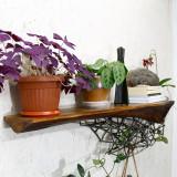 Raft pentru flori, cărți, și decoratiuni