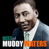 Muddy Waters The Best Of Muddy Waters LP (vinyl)