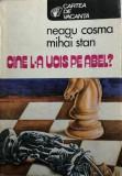 Cine l-a ucis pe Abel Neagu Cosma, Mihai Stan