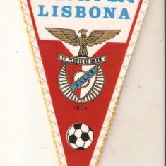 Fanion Benfica Lisabona