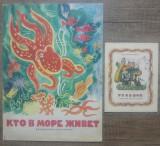 Lot 2 carti rusesti pentru copii