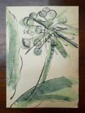 38. Planta, acuarela veche, pictura