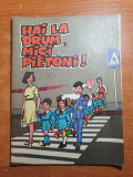 Carte pentru copii realizata de arici pogonici - hai la drum,mici pietoni !-1974