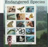 Fauna,specii rare ,SUA.