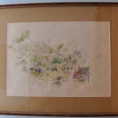 Studii Elena Greculesi  - Acuarela, Natura, Altul