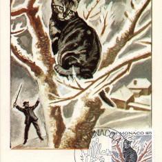 MONACO 1975, CM, Fauna, Pisica, Maxime