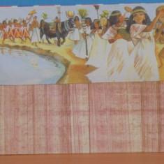 EGIPT -PLIC NECIRCULAT IMITATIE PAPIRUS CU O POZA, SARBATOAREA NILULUI.