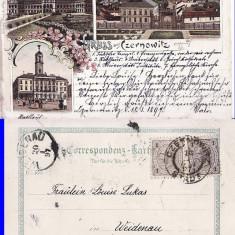 Cernauti , Bucovina - litografie -editura Krug, Circulata, Printata