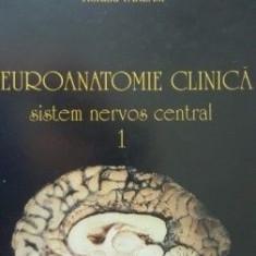 Neuroanatomie clinica Sistem nervos central-Ion Petrovanu,