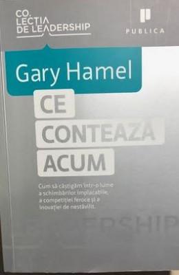 Ce conteaza acum Gary Hamel foto