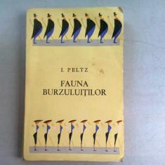 FAUNA BURZULUITILOR - I. PELTZ