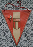 Fanion si insigna C.S. Botoșani fotbal club sportiv