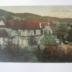 Govora-Vila Hortensiea,carte postala circulata 1915