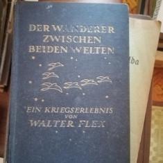 Der Wanderer zwischen beiden Welten: Ein Kriegserlebnis – Walter Flex, 1916