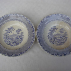Doua farfurii decorative din portelan vechi suedez RORFTRAND