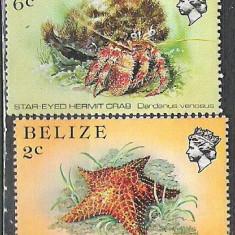 Belize 1984 Fish A.41