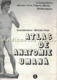 Cumpara ieftin Atlas De Anatomie Umana I - Conf. Dr. Mircea Ifrim