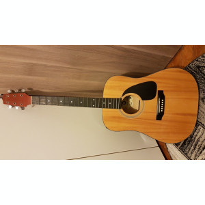 Chitara electroacustica Hora Reghin