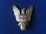 Insignă militară - Specialist de clasă - clasa a I-a - Pilot militar - Aviație