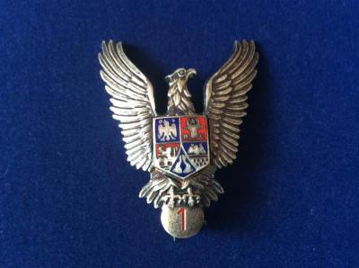 Insignă militară - Specialist de clasă - clasa a I-a - Pilot militar - Aviație foto