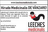 Lipitori medicinale (Hirudo Medicinalis)
