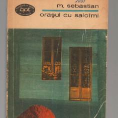 C8468 ORASUL CU SALCAMI DE MIHAIL SEBASTIAN