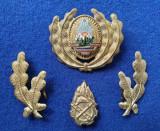 Insigna Militara Ofiter POMPIERI - Coifura insemn cascheta SEMN DE ARMA RSR