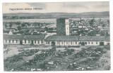 1535 - SALONTA, Bihor, Market, Romania - old postcard - unused - 1918, Necirculata, Printata